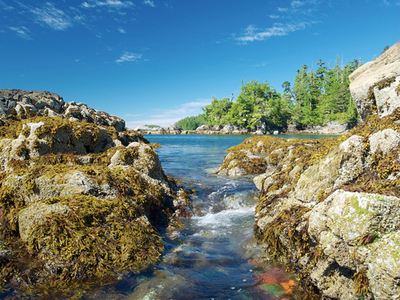 Exploring coastal B.C. by wooden schooner