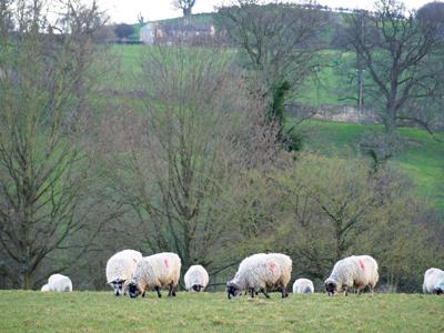 GETAWAY: Yorkshire Rambles