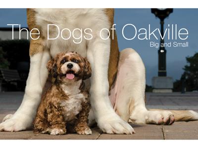 New Dogs of Oakville released