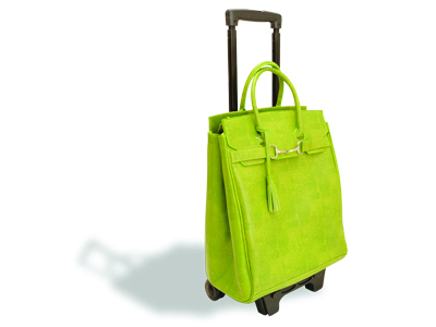 Bright carryon