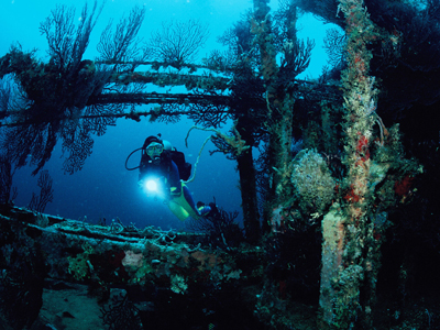 Dive into the depths of Grenada