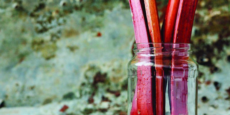 Resourceful Rhubarb