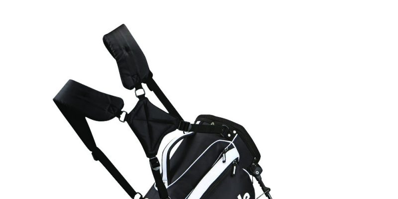 A golf bag he'll love